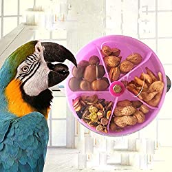 Zeagro Jouet de ramassage pour Oiseaux avec Boule rotative pour perroquets, perruches, Conures, cacatoès Gris Africain cacatoès aras Amazon Lovebird Pinson canari mangeoire