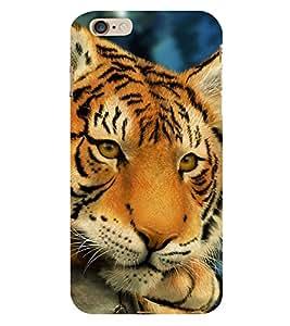 EPICCASE Cutie Baby Tiger Mobile Back Case Cover For Apple iPhone 6 Plus (Designer Case)