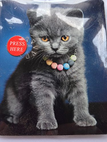maranda-ti-mt77-mi-torch-smarty-cat-grey-kitten-handy-handbag-purse-flashlight-plastic-multi-colour