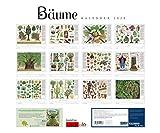 B?ume 2020 - Von Piotr Socha - DUMONT Kinder-Kalender - Querformat 58,4 x 48,5 cm - Spiralbindung