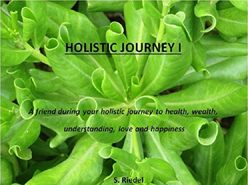 holistic-journey-i-english-edition