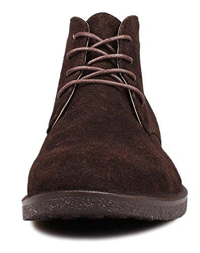 Fangsto  Desert Boots, Bottes Chukka garçon homme Café