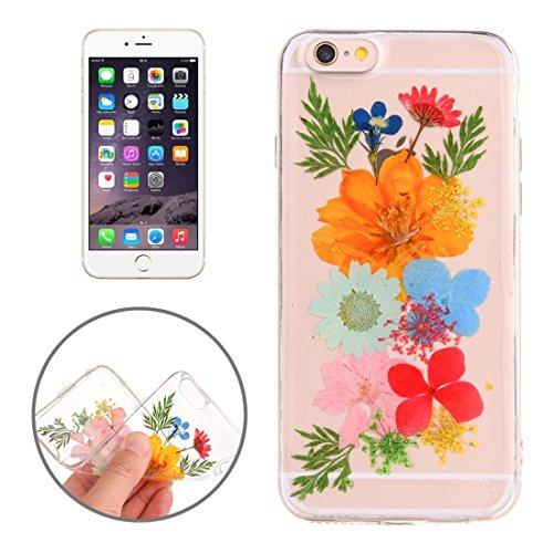 Easy go shopping custodia protettiva in tpu trasparente rigata con fiore reale essiccato a gocciolamento epossidico per iphone 6 e 6s (sku : ip6g2996q)