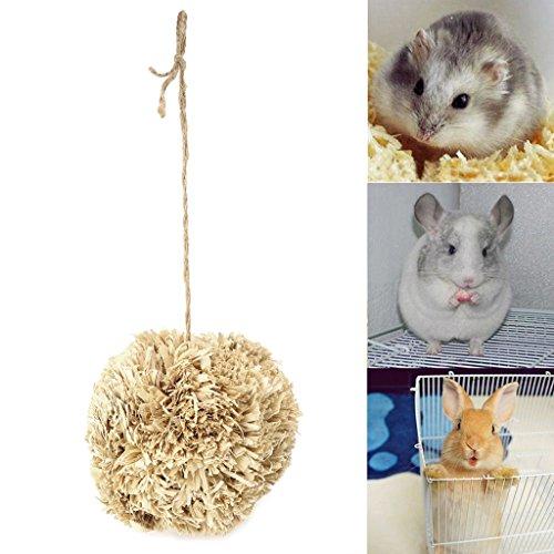 Autone Kleine Haustiere Kauen, Mais Schale Leaf Ball Pet Nature Kauspielzeug für Kleine Tiere Hamster Kaninchen Parrot (Tiere Mais-schale)