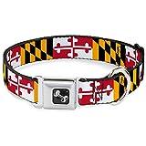 Buckle Down 38,1–66cm Maryland Flaggen Hundehalsband Bone, groß