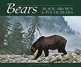 Bears: Black, Brown & Polar Bears (Wildlife Appreciation)