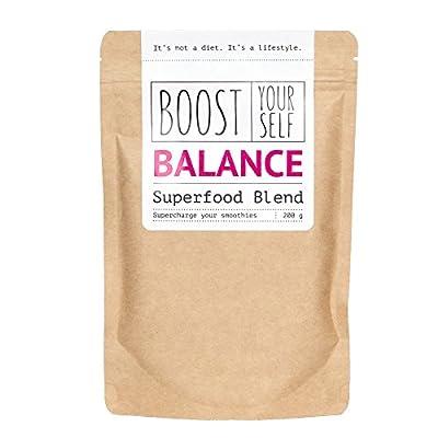 Superfood Balance Smoothie Powder by Boost Yourself Healthy Weight Loss Antioxidant Vitamins from Hemp Blueberries Sea Buckthorn Lucuma Rosehip Chia Goji Aronia Vegan No Added Sugar and Dairy Free
