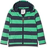 Fat Face Boy's Sonny Stripe Zip Thru Hoodie, Green (Bright Grn), Years (Size: 4-5)