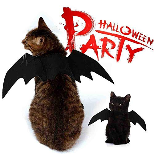 DSNGZ Halloween Dekoration Haustier Hund Katze Schwarze Fledermausflügel Niedliche Haustiere verkleiden Sich Cosplay Flügel Kostüm Party Festival Hundebedarf