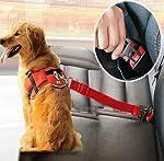 AquaNature Vehicle Car Pet Dog Seat Belt (Green Colour)