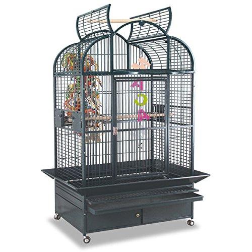 Montana Cages ® | Papageienkäfig Vogelkkäfig, Voliere, New Berlin GRATIS Versand