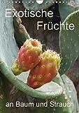 Exotische Früchte an Baum und Strauch (Wandkalender 2017 DIN A4 hoch): Tropisches Obst fotografiert wie es wächst an der Pflanze (Planer, 14 Seiten ) (CALVENDO Natur)