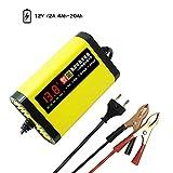 Festnight Chargeur de Batterie de Moto de Voiture 12V 2A complètement Automatique 3...