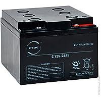 NX - Batería Plomo sellada Gel NX 24-12 Cyclic 12V 24Ah M5-F