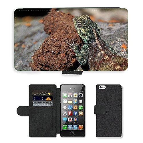 GoGoMobile PU Leather Flip Custodia Protettiva Case Cover per // M00119484 Agame Farbbartagame Schuppenkriechtier // Apple iPhone 5 5S 5G