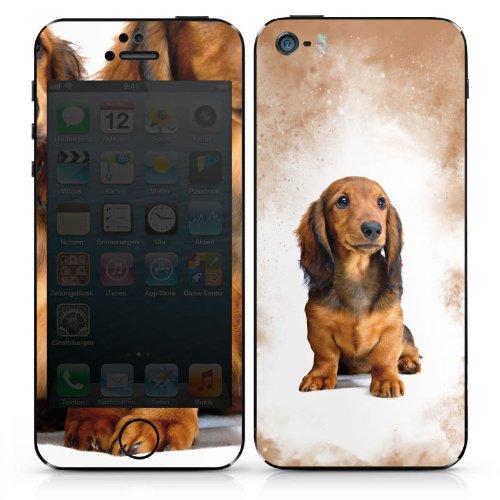 Apple iPhone 5 Case Skin Sticker aus Vinyl-Folie Aufkleber Dackel Hund Welpen DesignSkins® glänzend