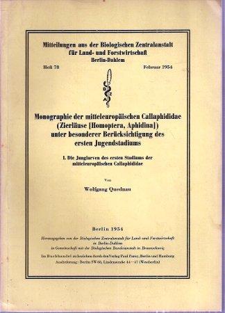 Monographie der mitteleuropäischen Callaphididae (