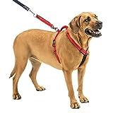 Hundegeschirr–Non-Pull Keine Erstickungsgefahr Dank Sicherer Humane verstellbar Reflektierende Dog Training Geschirr, Nicht Ziehen Pet Hundegeschirr, Easy Step-in Einstellbare Geschirr für