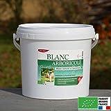 Agro Sens - Blanc arboricole à l'ancienne prêt à l'emploi. Seau 4 litres