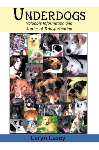 Underdogs: Valuable Information and Stories of Transformation (English Edition) por Caryn Casey