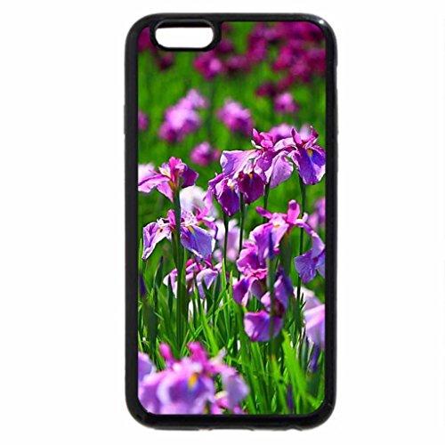 iPhone 6S / iPhone 6 Case (Black) Sun Kissed Irises
