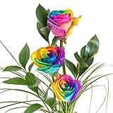 3 bunte Rosen - dekoriert und inklusive gratis Kultvase