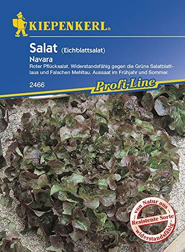 Eichblattsalat  <strong>Blattform</strong>   Rundlich