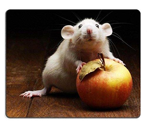 pets-maus-mause-ratten-apple-maus-pads-made-um-um-unterstutzung-bereit-9-7-203-cm-250-mm-x-7-7-203-c