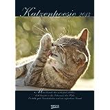 Katzenpoesie 2013