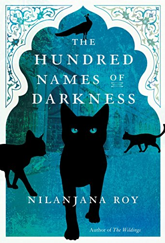 The Hundred Names of Darkness por Nilanjana Roy