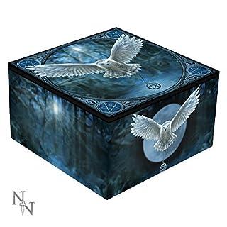 Awaken Your Magic Owl Pentagram Art Mirror Box By Anne Stokes
