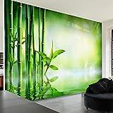 murando - Fototapete 350x245 cm - Vlies Tapete - Moderne Wanddeko - Design Tapete - Wandtapete - Wand Dekoration - Spa Bambus Natur grün b-B-0164-a-a