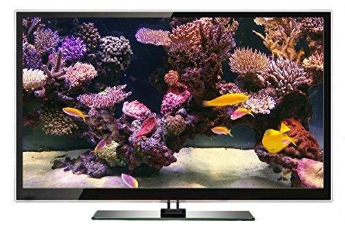 Aquarium DVD | TROPISCHES RIFF mit 4K ULTRA HD Download mit Natürlichen Geräuschen und Entspannender Musik - 6
