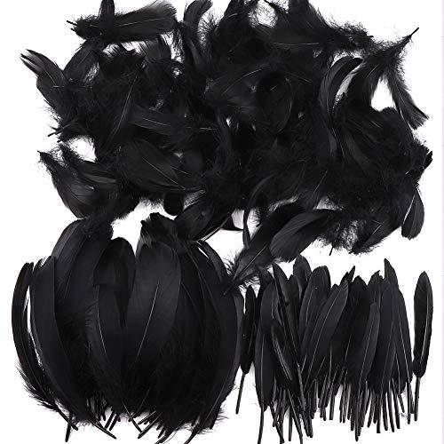 Feder zum Basteln, 250 Stück, bunte Federn, für Heimwerker, Traumfänger, natürliche Bastelarbeiten, Federn für Hochzeit/Party/Dekorationen (3 Größen) schwarz