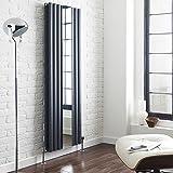 Design-Heizkörper Vertikal Revive Anthrazit mit Spiegel 1460 Watt - 1800 x 499mm