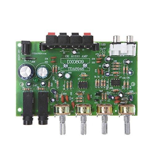 Verstärker Platine, 12V 60W Stereo Digital Audio Leistungsverstärkerplatine Elektronische Schaltung Modul DIY Von Yyooo