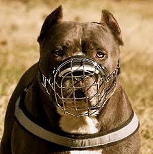 Bozal para perro de metal con cesta de alambre para amstaff, pitbull, bull terrier