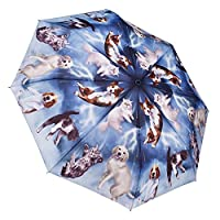 Galleria Raining Cats And Dogs Auto Open & Close Folding Umbrella