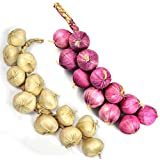 Crystu Artificial Onion with Garlic Simulation Foam Vegetables Artificial Garlic Fake Onion Hanging Vegetables String Home DecorationPack of 1 Combo