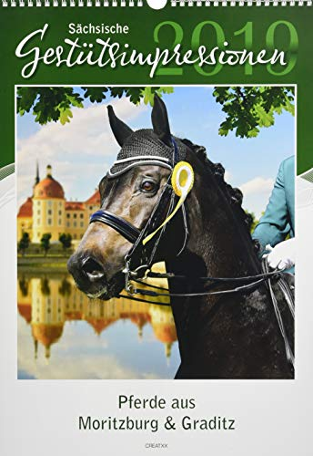Sächsische Gestütsimpressionen 2019: Pferde aus Moritzburg & Graditz