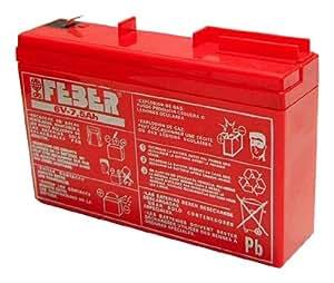 Célèbre 800004279 - batterie (6V, 7,5 Ah)