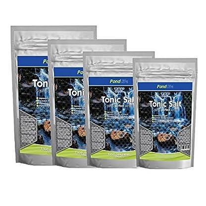 Pond Protector Tonic Salt Fish Health Treatment (1KG (Treats 4500L)) 1