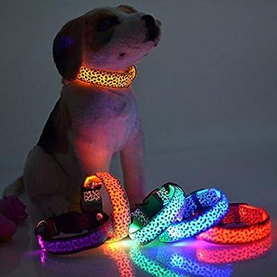 Lights of Germany LED Leuchthalsband Hunde Katzen halsband Leuchtband Leuchtschlauch Blink 3 Modi