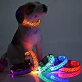 LED Leuchthalsband Hunde Katzen halsband Leuchtband Blink 3 Modi Gr. S orange