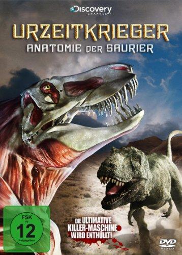 Anatomie der Saurier