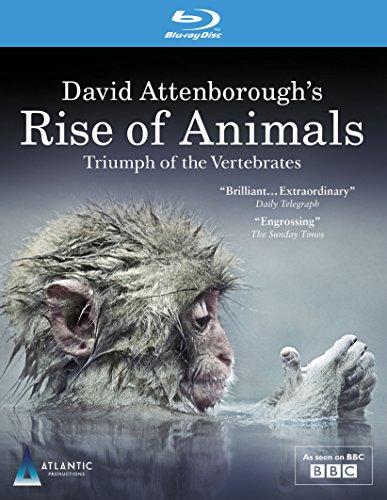 david-attenboroughs-rise-of-animals-triumph-of-the-vertebrates-as-seen-on-bbc-blu-ray-reino-unido
