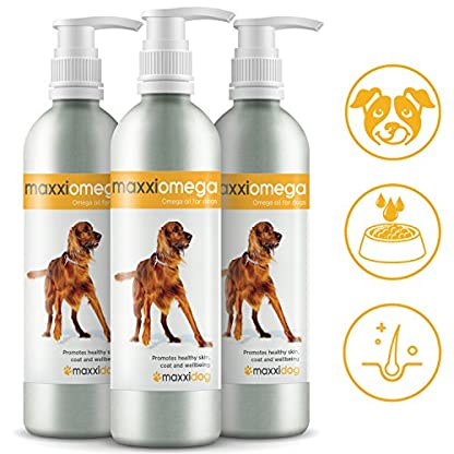 maxxipaws maxxiomega Oil for Dogs - Tasty Omega Supplement for Healthy Skin and Shiny Coat – Easy to Use Pump – Liquid… 6