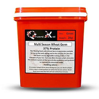 Queni Koi - Multi Season Wheat Germ 6mm (2 kg) - Koi Food 1