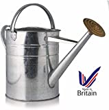 Galvanised Metal Watering Can Plant Garden 9 Litre / 2 Gallon + Solid Brass Rose