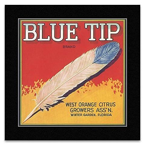 Fruit Crate Labels - Blue Tip - West Orange Citrus Growers Florida Mini Poster - 40x40cm